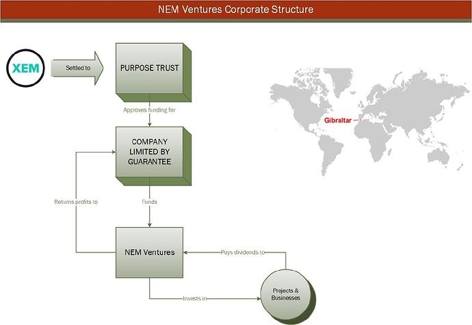 Nem Ventures Governance